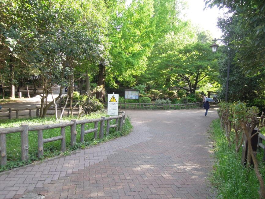 井の頭公園01
