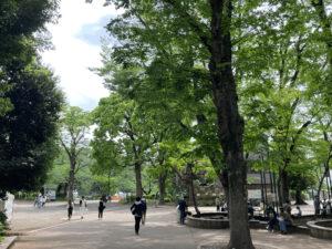 井の頭公園の広場