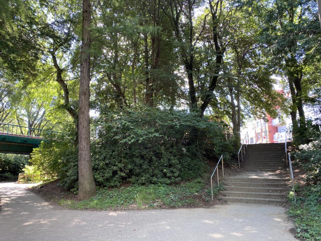 井の頭公園駅横の階段