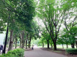 小金井公園の自然