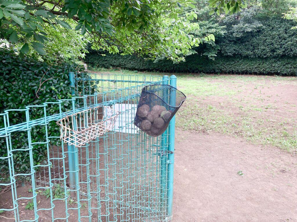 武蔵川公園ドッグランのテニスボール