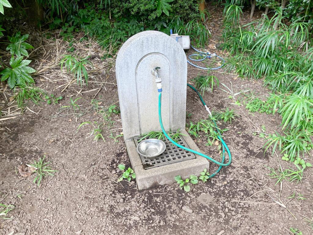 武蔵川公園ドッグランの水飲み場