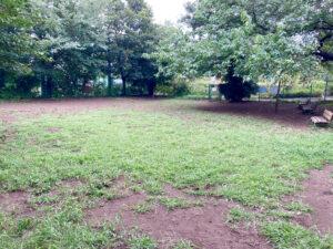 武蔵川公園ドッグランの内部②