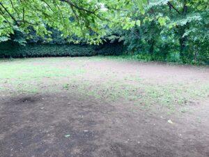 武蔵川公園ドッグラン内部①