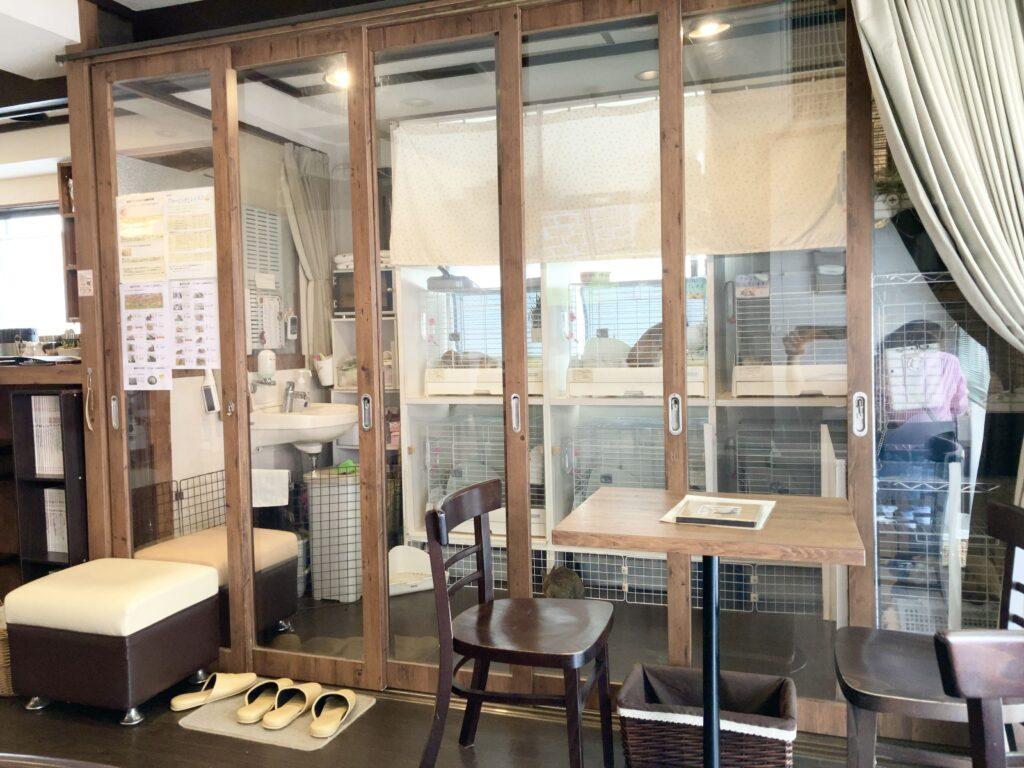 うさぎカフェ「カフェ・ミニヨン」ふれあいスペース